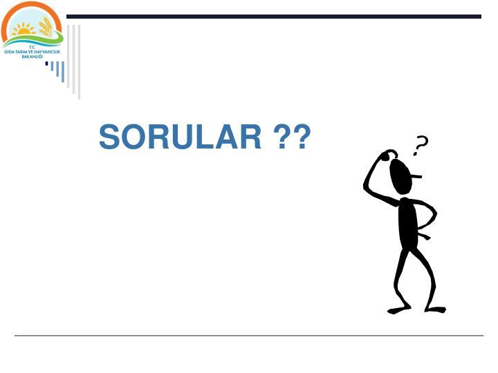 SORULAR ??