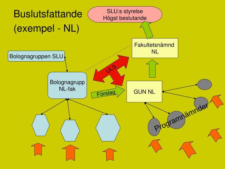 SLU:s styrelse