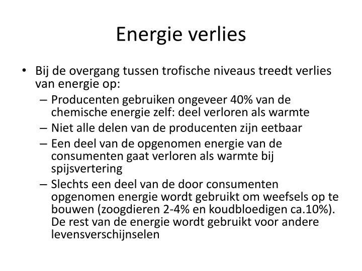Energie verlies