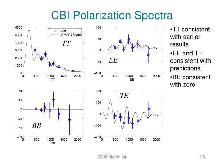 CBI Polarization Spectra