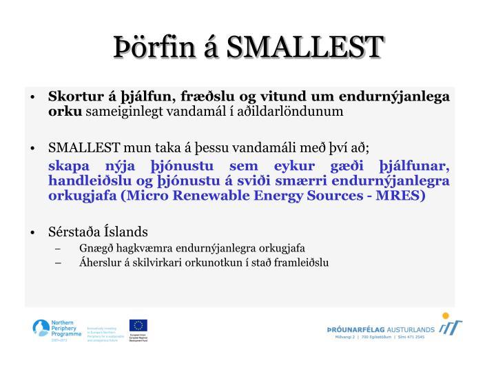 Þörfin á SMALLEST