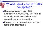 what if i don t want opt after i ve applied