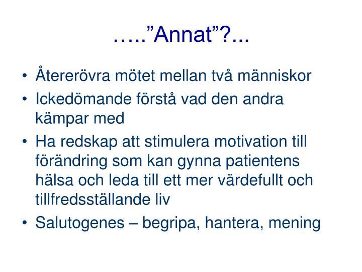 "…..""Annat""?..."