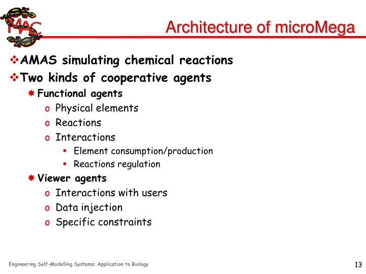 Architecture of microMega