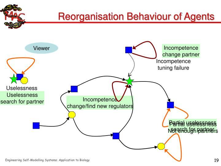 Reorganisation Behaviour of Agents