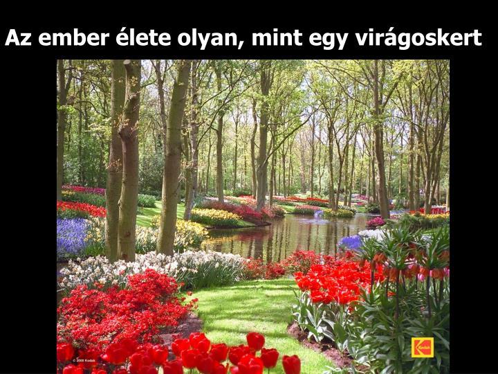 Az ember élete olyan, mint egy virágoskert