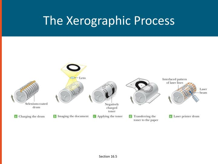 The Xerographic Process