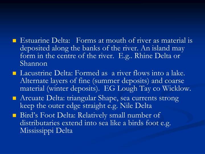 Estuarine Delta: