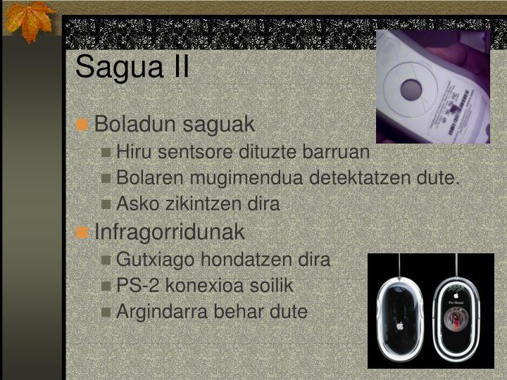 Sagua II