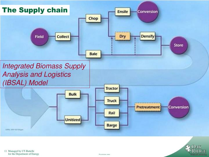 The Supply chain