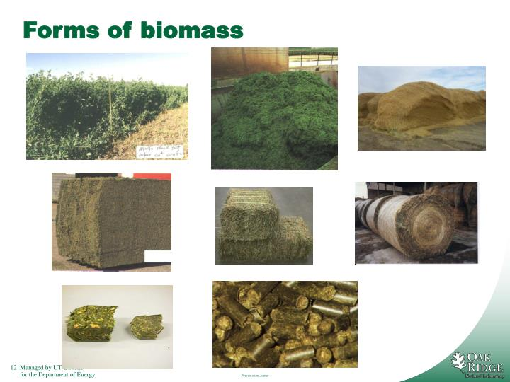 Forms of biomass