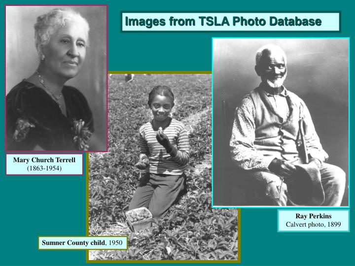 Images from TSLA Photo Database