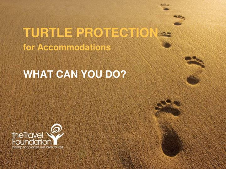 Turtle protection for accommodations