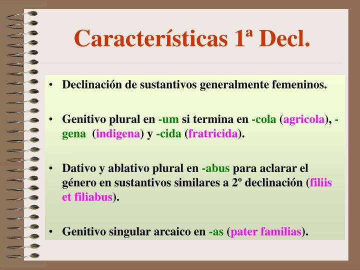 Características 1ª Decl.