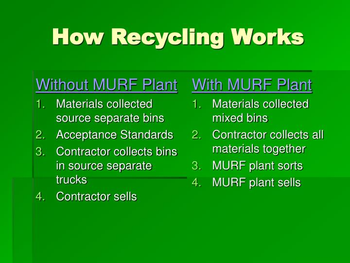 Without MURF Plant