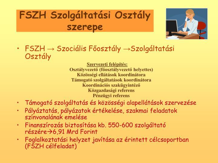 FSZH Szolgltatsi Osztly szerepe