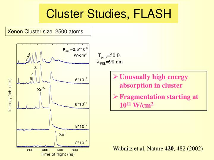 Cluster Studies, FLASH