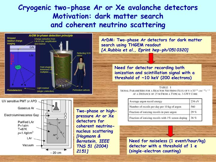 Cryogenic two-phase Ar or Xe avalanche detectors
