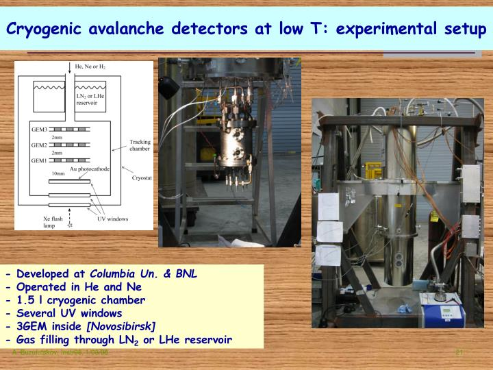 Cryogenic avalanche detectors at low T: experimental setup