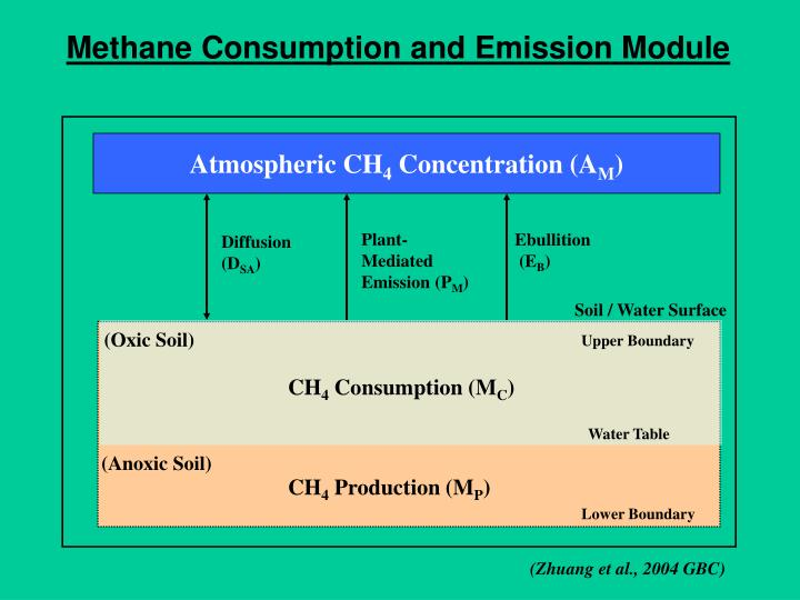 Methane Consumption and Emission Module