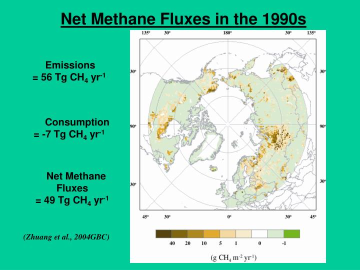 Net Methane Fluxes in the 1990s