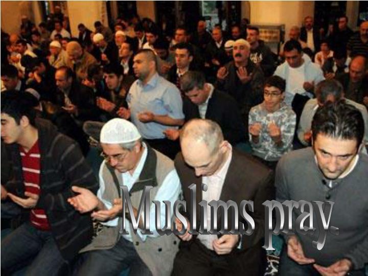 Muslims pray.