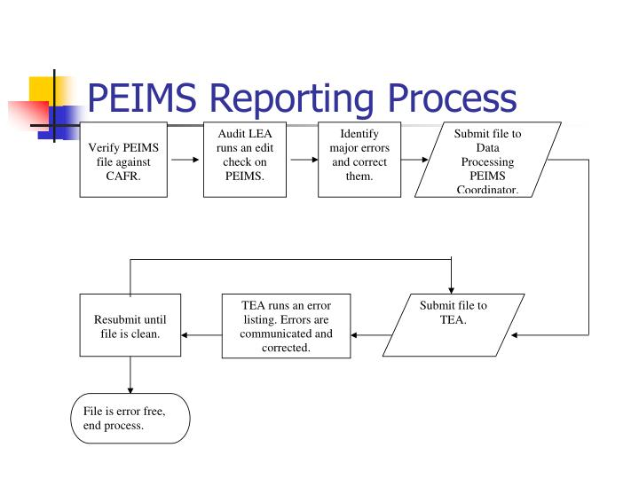 PEIMS Reporting Process
