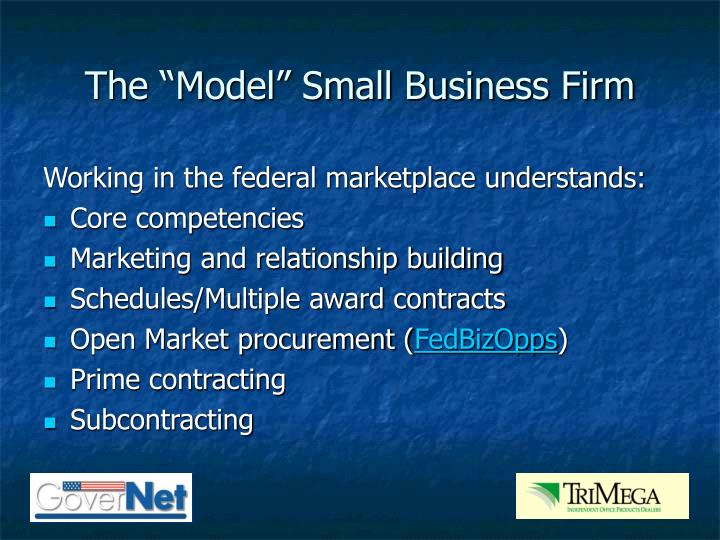 "The ""Model"" Small Business Firm"