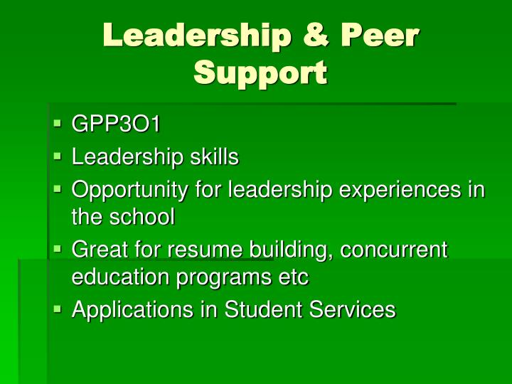 Leadership & Peer Support