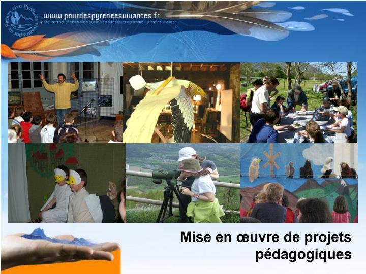 Mise en œuvre de projets pédagogiques