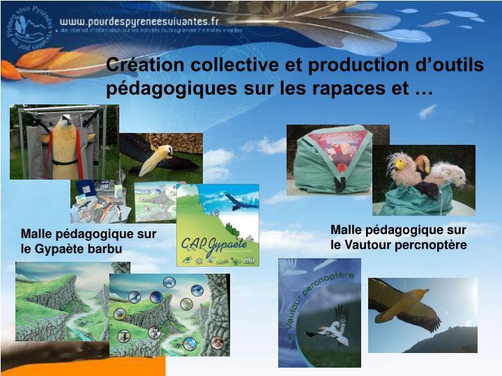 Création collective et production d'outils pédagogiques sur les rapaces et …