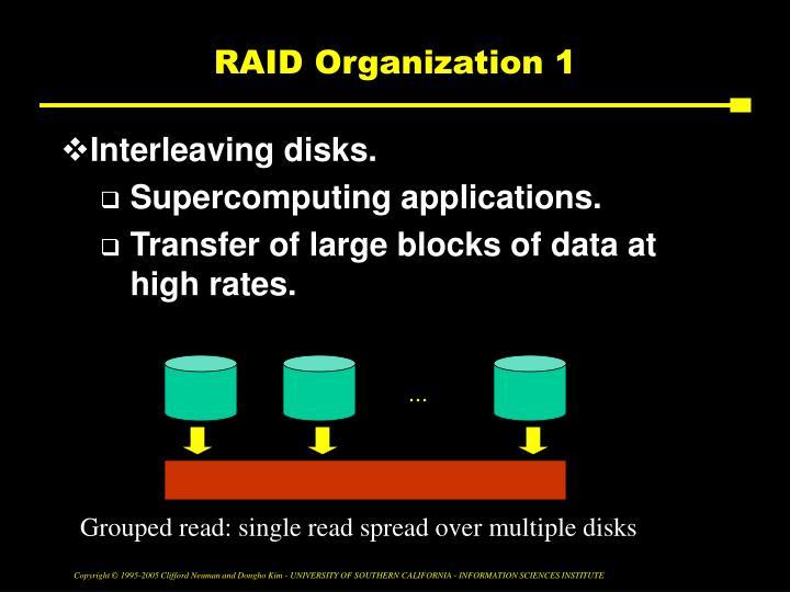 RAID Organization 1
