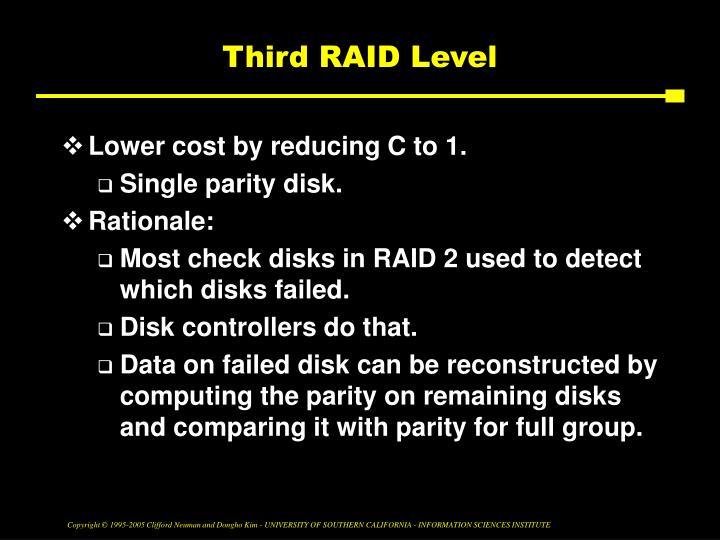 Third RAID Level