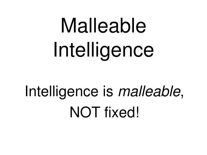 Malleable Intelligence
