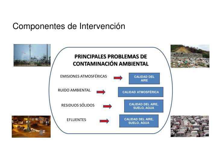 Componentes de Intervención