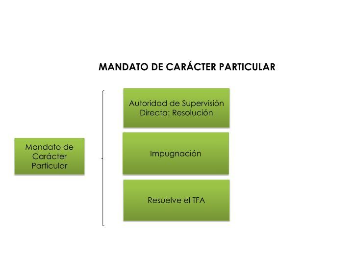MANDATO DE CARÁCTER PARTICULAR