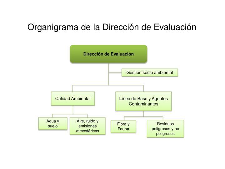 Organigrama de la Dirección de Evaluación