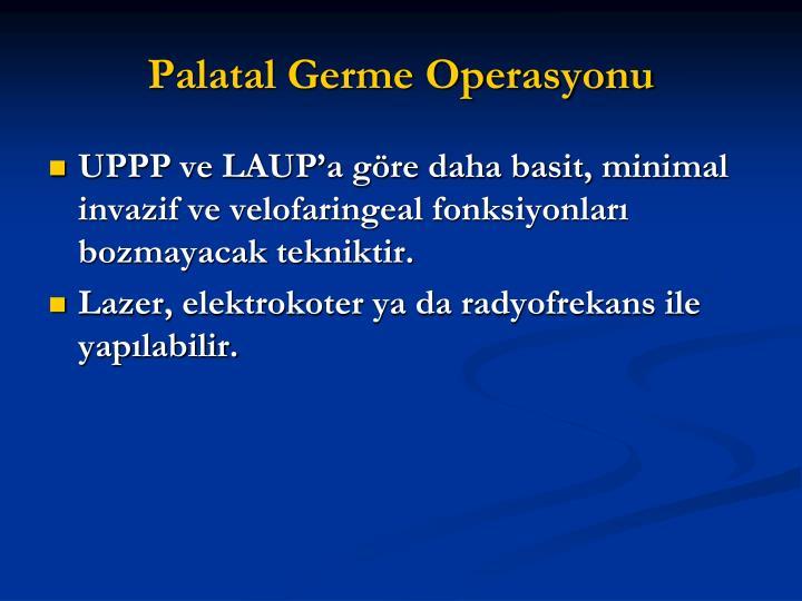Palatal Germe Operasyonu