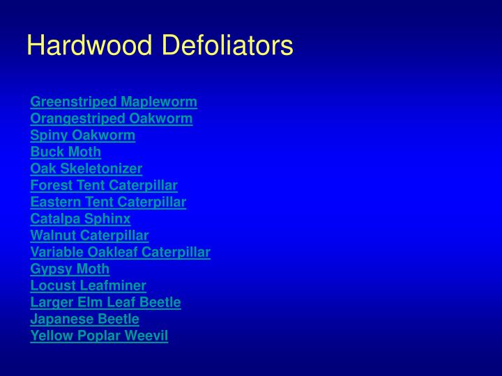 Hardwood Defoliators
