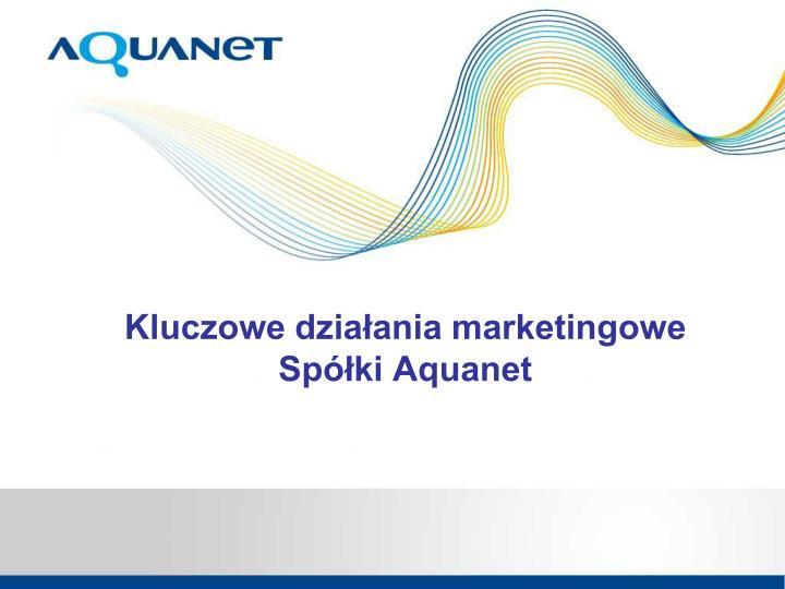 Kluczowe działania marketingowe
