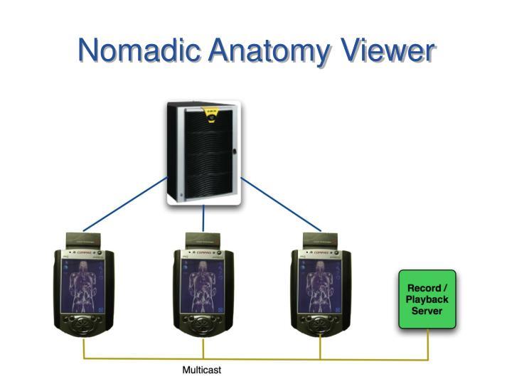 Nomadic Anatomy Viewer