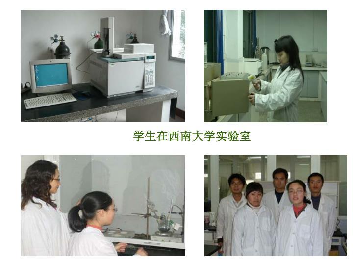 学生在西南大学实验室