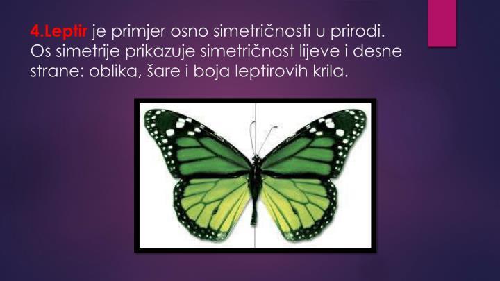 4.Leptir