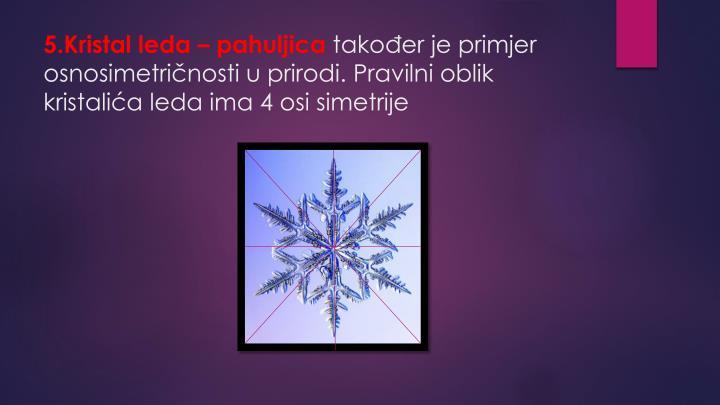 5.Kristal leda – pahuljica