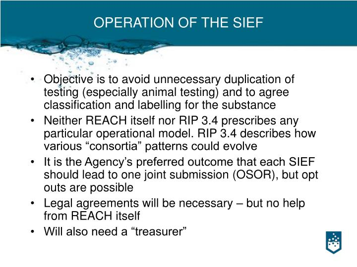 OPERATION OF THE SIEF
