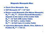 magnetic monopole mass