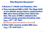 why magnetic monopoles3