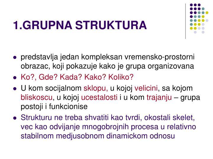 1.GRUPNA STRUKTURA