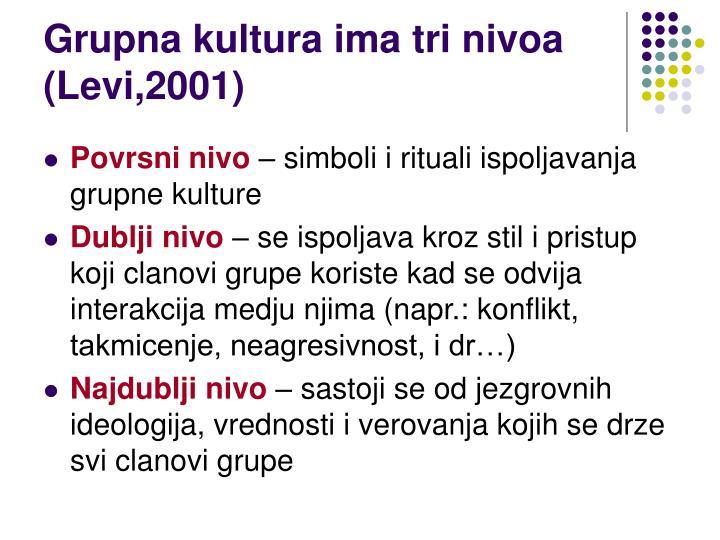 Grupna kultura ima tri nivoa (Levi,2001)