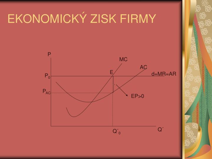 EKONOMICK ZISK FIRMY